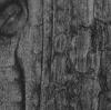 (заказная) SIBU WL Carbonized Wood Antigrav 2600х1000х3.3мм